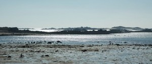 Ufer_Meer